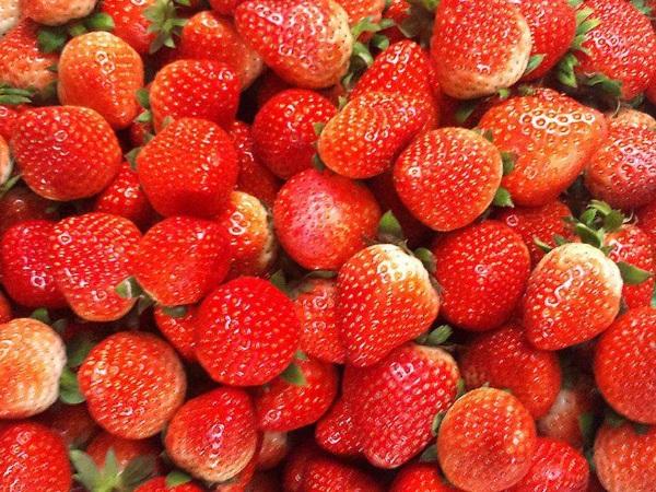 糖尿病患者营养剂 低糖水果排行榜